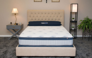 therapedic mattress for back pain